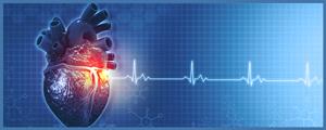 EKG, Stress Tests, Cardiology Medical Services Near Me in College Park MD, New Carrollton MD, Falls Church VA, and Tyson Corner Vienna VA